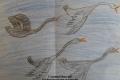 Весенний прилет лебедей
