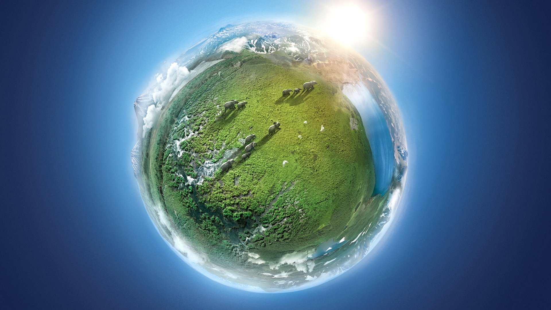 Моя зеленая планета